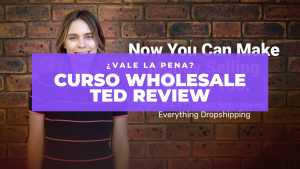 Curso Wholesale Ted Review